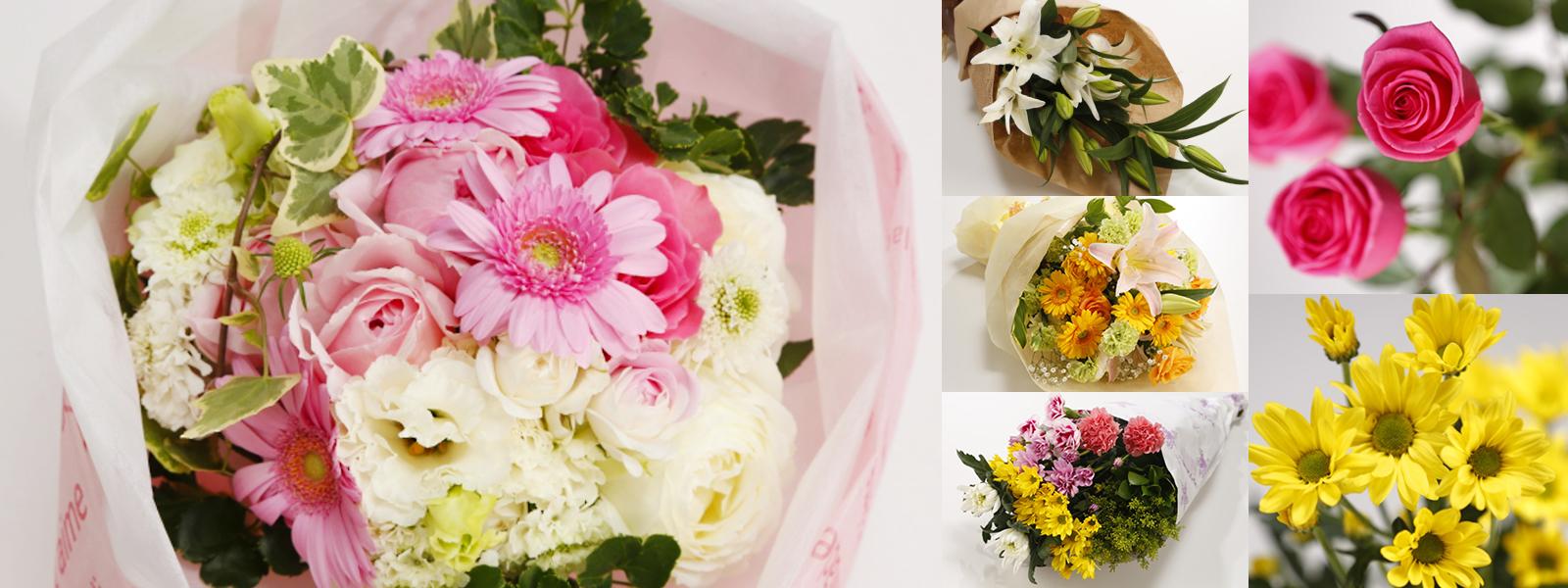 イメージ:花の会・花本