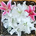 イメージ:お別れ花