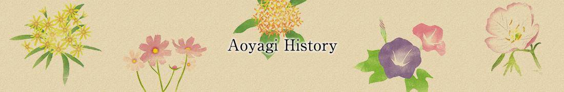 イメージ:あおやぎの歴史