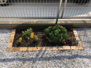 イメージ:花壇