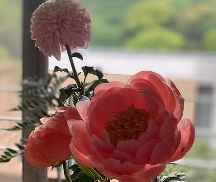 イメージ:春