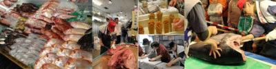 写真:ホームページ限定イベント 長浜鮮魚市場市民感謝デーご招待