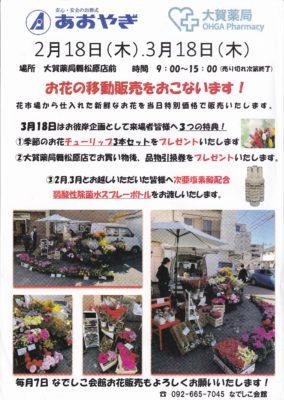 写真:3/18 (木) お花の移動販売を行います!